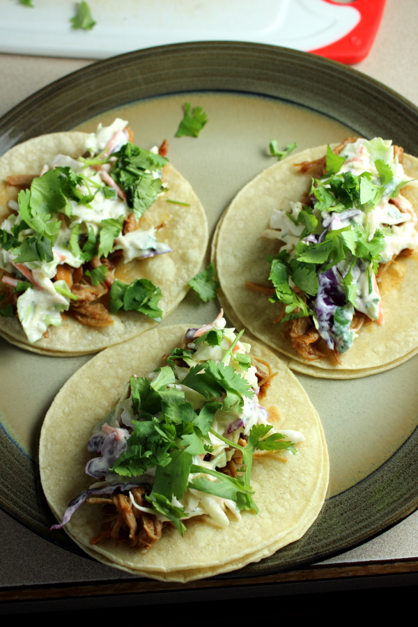 Pork Barbacoa Tacos
